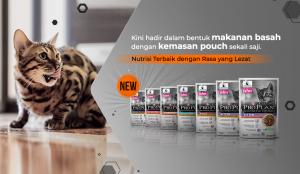 Jenis dan Harga Makanan Kucing Proplan